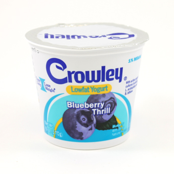 blueberryyogurt